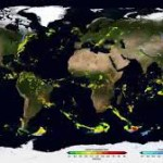 The Global Precipitation Measurement mission produced its first global map of rainfall and snowfall, from April to September 2014. The data map combines measurements from 12 satellites and the GPM Core Observatory, launched Feb 27, 2014, covers 87 percent of the globe and is updated every half hour. Image Credit: NASA's Goddard Space Flight Center